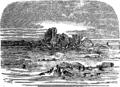 Кесария (БЭАН).png