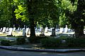 Київ, Байкове, Військові дільниці, 145 братських могил воїнів, які загинули в роки ВВВ 1941-1945 років.jpg