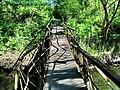Кривой мост.jpg