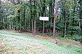 Лес у замка. Фото Виктора Белоусова - panoramio.jpg