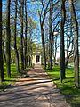 Михайловский сад, май02.jpg