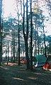 Молодіжний табір у малокаховському борі.jpg