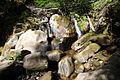 Ручей в лесу - panoramio.jpg
