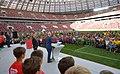 Стадион Лужники 2017 5.jpg