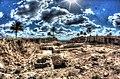 אתר ארכיאולוגי - תל מגידו לכיוון מזרח.jpg