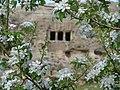 روز ۱٥ اردبهشت از درون باغ چند عکس زیبا از گوردخمه فقره قا ـ توسط خودم حمزه کاک خضری.jpg