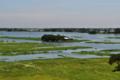 মেঘনা নদী ২.png