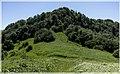 სალომეს მთასთან ახლოს - panoramio.jpg