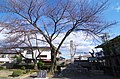 史跡長岡宮跡 大極殿公園 2013.12.23 - panoramio (1).jpg