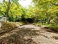 坂道 - panoramio.jpg