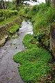 宜蘭河支流 A Tributary of Yilan River - panoramio.jpg
