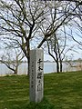木場湖「千本桜」 - panoramio (3).jpg