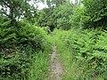 -2020-06-10 Footpath in the parish of Knapton, Norfolk (1).JPG