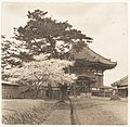 -Kofukuji Temple, Nara, Japan- MET DP136220.jpg