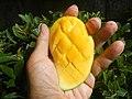 0526Cuisine food in Baliuag Bulacan Province 69.jpg