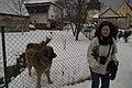 090225-big dog (3326937410).jpg