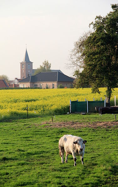 Esplechin (Belgium), panorama seen from the fields bordering the rue du Pont d'Eau located at the south-east of the village.