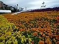 15 Higashikaiganchō, Atami-shi, Shizuoka-ken 413-0012, Japan - panoramio.jpg