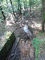 17 Mordgrundbach von Stechgrundbrücke.JPG