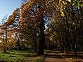 18.10.2011-2 - panoramio.jpg