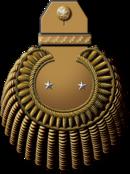 Генерал-лейтенант морской артиллерии