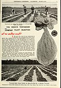 1946 catalog of fruits (1946) (16482982848).jpg