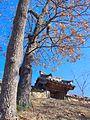 2008-Korea-Gyeongju-Yangdong Village-12.jpg