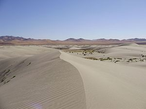 Humboldt County, Nevada - The Winnemucca Sand Dunes, north of Winnemucca
