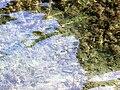 20130608 Plitvice Lakes National Park 006.jpg