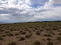 2014-07-18 16 58 48 Distant view of the south edge of the Black Rock Lava Flow, Nevada.JPG