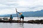 20160805 Poławiacze wodorostów na Jeziorze Inle w Mjanmie 7576 DxO.jpg