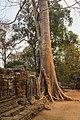 2016 Angkor, Banteay Kdei (11).jpg