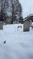 20190112 105443 Remuh Cemetery in Kraków january 2019.jpg