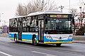 5636410 at Liqiao (20200116153642).jpg