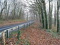 A449 passes through mixed woodland - geograph.org.uk - 636471.jpg