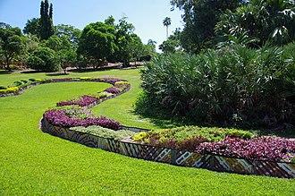 George Brown Darwin Botanic Gardens - Frangipani Hill