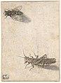 A Grasshopper and a Bee MET DP800021.jpg
