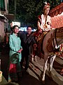 A Indian Wedding- Groom over Horse.jpg