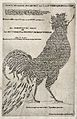 A cock, representing Theodorus de Cock (Theodorus de Kock). Wellcome V0049754.jpg