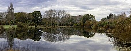 A pond, The Groynes, Christchurch, New Zealand.jpg