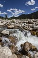A raging stream in Rocky Mountain National Park in the Front Range of the spectacular and high Rockies in north-central Colorado LCCN2015633342.tif