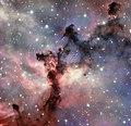 A rosette for the VLT Rosette Nebula.tif
