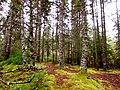 Acadia National Park (8111150546).jpg
