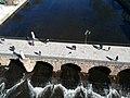 Aerial photograph of Ponte de Trajano (1).jpg