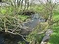 Afon Alaw below Pont Llanfigael - geograph.org.uk - 1288301.jpg
