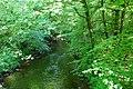 Afon Dwyfach - geograph.org.uk - 802622.jpg