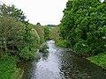 Afon Hafren (River Severn) - geograph.org.uk - 1321519.jpg