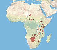 Distribuição geográfica do mabeco.