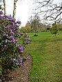 Alby Gardens - geograph.org.uk - 774341.jpg