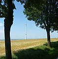 Allee - panoramio (10).jpg